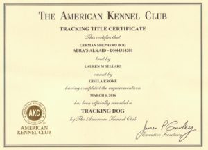 Kaid's American Tracking Dog Certificate (3)