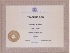 Kaid's CKC TD certificate (3)
